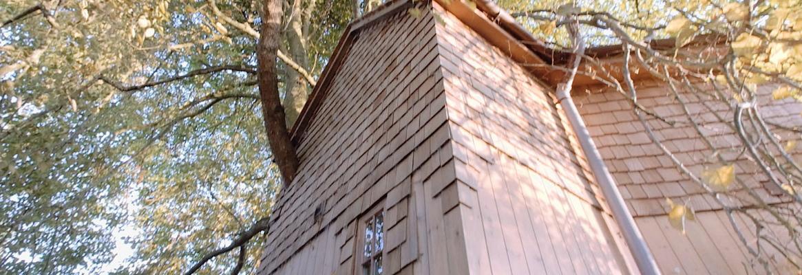 Treehouse video.full